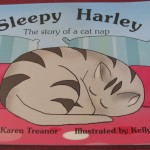 Book - Sleepy Harley